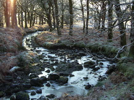 A river in Erriff