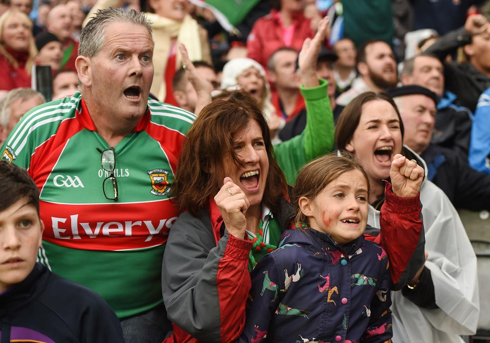 How Are The Nerves Mayo Fans