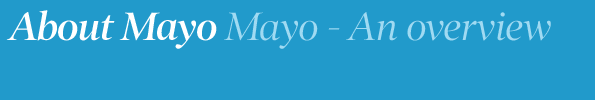 Mayo - An overview